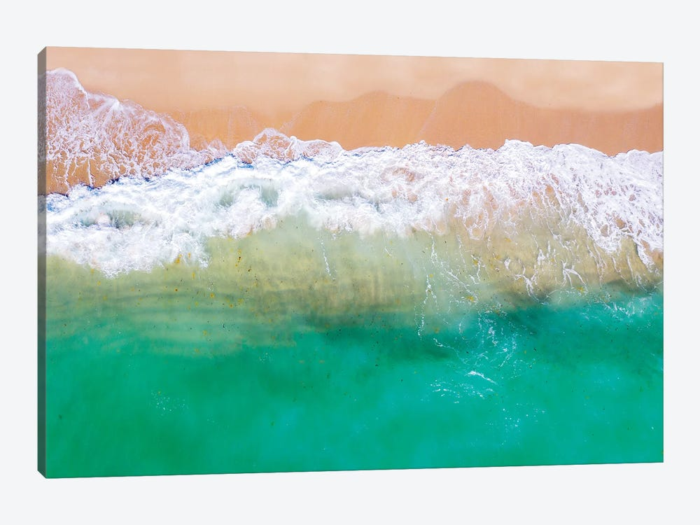 Tropical Dream by Susanne Kremer 1-piece Canvas Art
