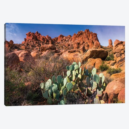 Chisos Mountains with Prickly Pear Cactus II Canvas Print #SKR38} by Susanne Kremer Canvas Print