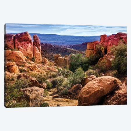 Chisos Mountains with Prickly Pear Cactus III  Canvas Print #SKR39} by Susanne Kremer Canvas Art Print