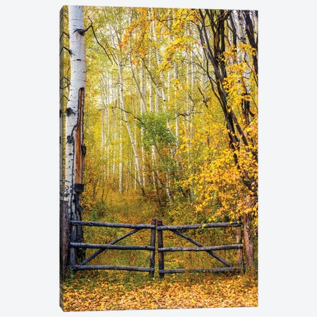 The Colorado Gate, Colorado Canvas Print #SKR435} by Susanne Kremer Canvas Print