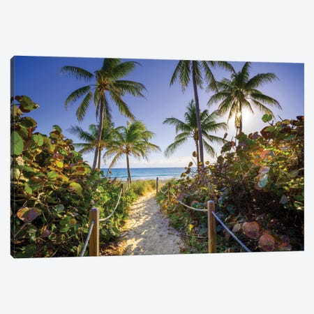 Sandy Path With Palm Trees , Beach South Florida Canvas Print #SKR440} by Susanne Kremer Canvas Print