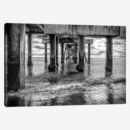 Hiding From The Storm, Black And White ,South Florida Canvas Print #SKR443} by Susanne Kremer Canvas Print