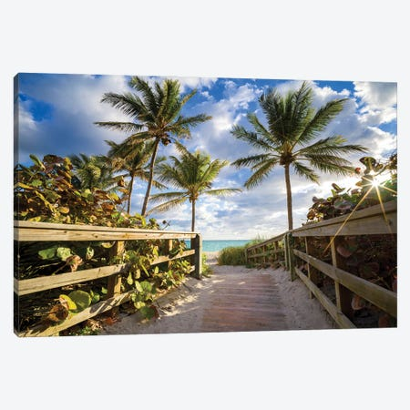 Beach Path Framed With Palm Trees, South Florida Canvas Print #SKR449} by Susanne Kremer Canvas Art Print