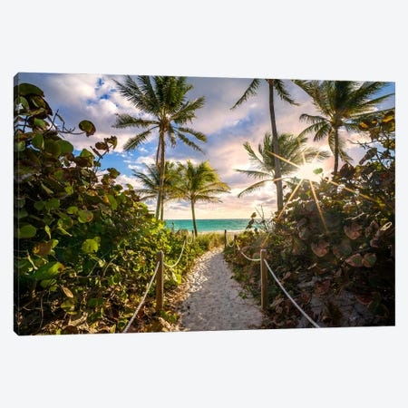 Natural Beach Entrance Early Morning Framed With Palm Trees,Miami Florida Canvas Print #SKR450} by Susanne Kremer Canvas Wall Art