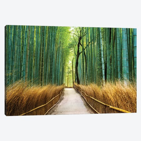 Arashiyama Ancient Bamboo Forest  Canvas Print #SKR6} by Susanne Kremer Canvas Print