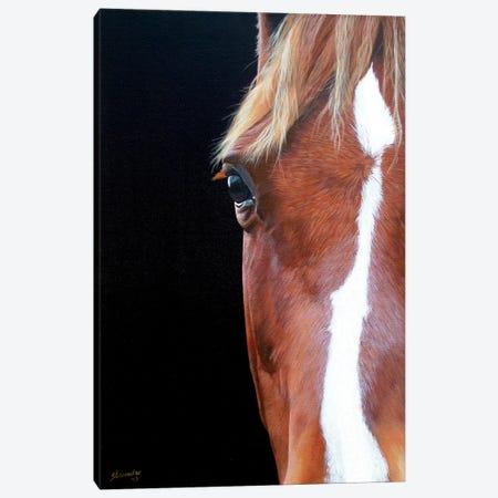 Peekaboo Canvas Print #SLA14} by Sally Lancaster Canvas Artwork