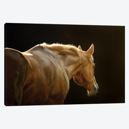 Silhouette Canvas Print #SLA22} by Sally Lancaster Canvas Artwork