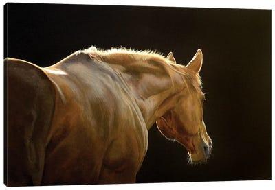 Silhouette Canvas Art Print