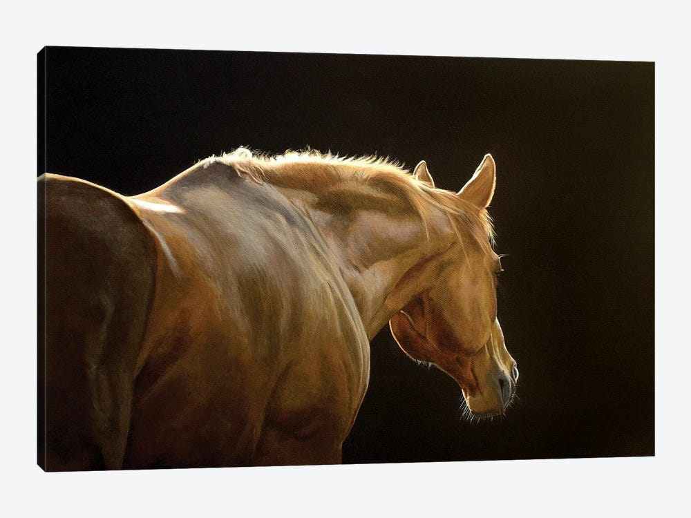 Silhouette by Sally Lancaster 1-piece Canvas Art