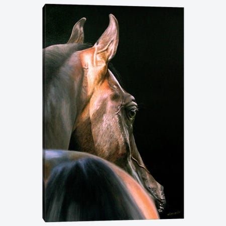 Arabian Beauty Canvas Print #SLA2} by Sally Lancaster Art Print