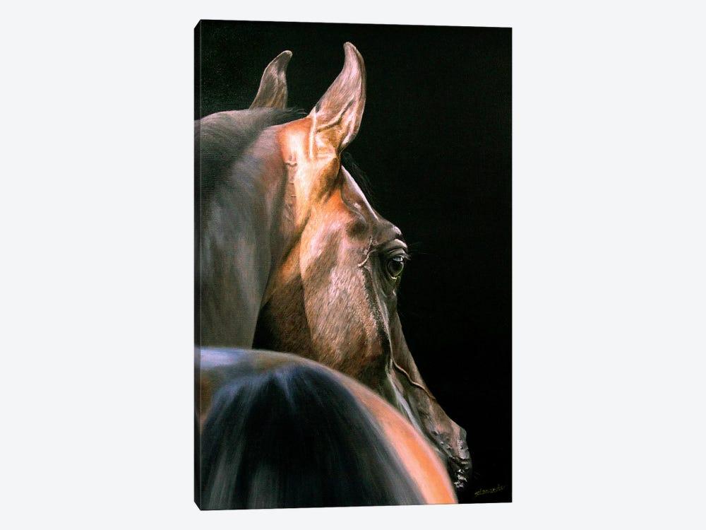Arabian Beauty by Sally Lancaster 1-piece Canvas Artwork