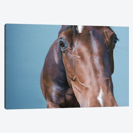What You Looking At Canvas Print #SLA37} by Sally Lancaster Canvas Artwork