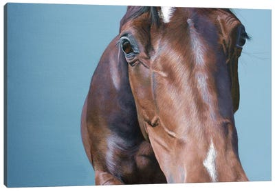 What You Looking At Canvas Art Print