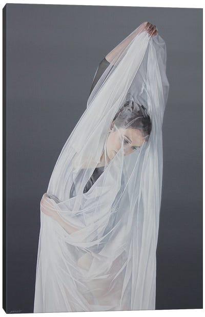 Shrouded Beauty Canvas Art Print