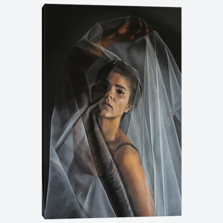 Through The Haze Canvas Print #SLA41} by Sally Lancaster Canvas Art