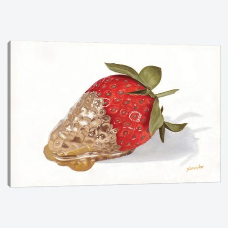 Strawberries Of Gold II 3-Piece Canvas #SLA50} by Sally Lancaster Art Print