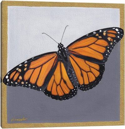 Monarch Canvas Art Print