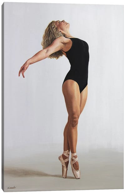 Flection Canvas Art Print