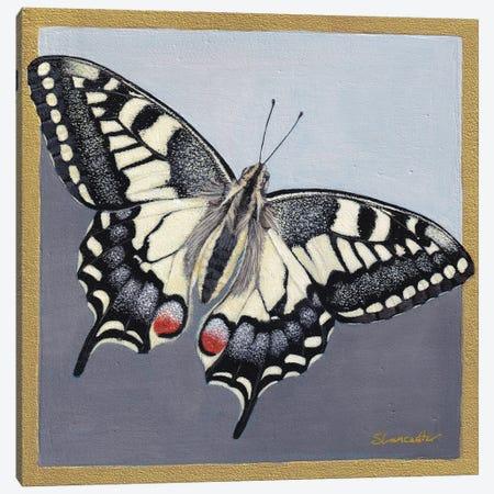 Yellow Swallowtail Canvas Print #SLA60} by Sally Lancaster Canvas Art