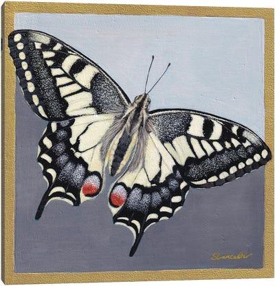 Yellow Swallowtail Canvas Art Print