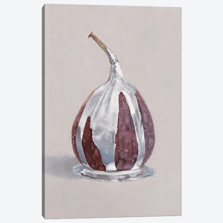 Fig with Silver Canvas Print #SLA67} by Sally Lancaster Canvas Print
