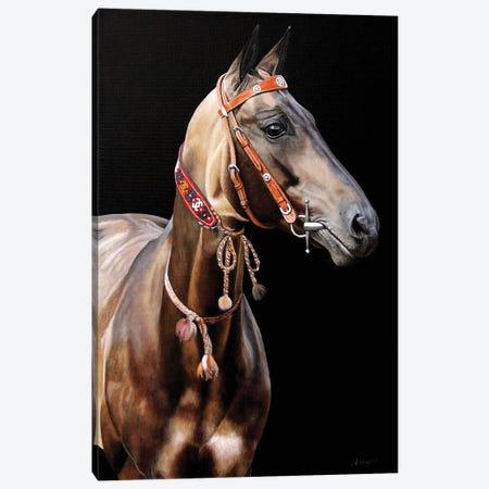 Golden Tones Canvas Print #SLA9} by Sally Lancaster Canvas Print