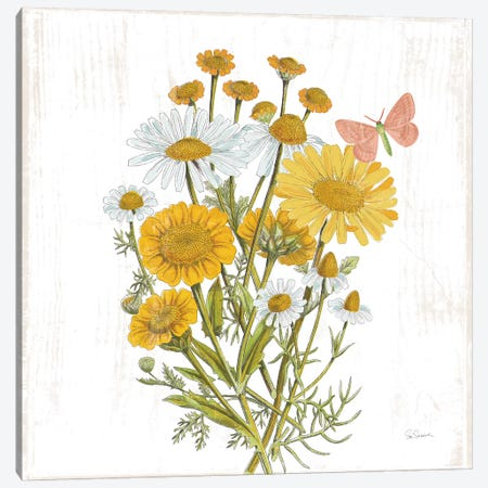 White Barn Flowers X Sq Canvas Print #SLB101} by Sue Schlabach Art Print