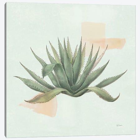 Desert Color Succulent I Mint Canvas Print #SLB103} by Sue Schlabach Canvas Print