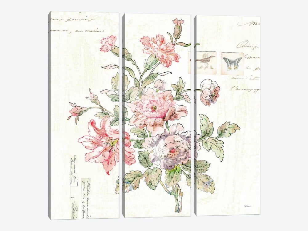 Cottage Roses III by Sue Schlabach 3-piece Art Print