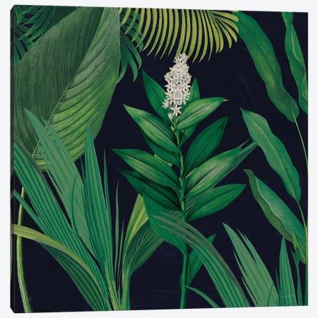 Dramatic Tropical I Canvas Print #SLB42} by Sue Schlabach Canvas Art Print