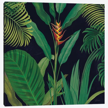 Dramatic Tropical II Canvas Print #SLB43} by Sue Schlabach Canvas Print
