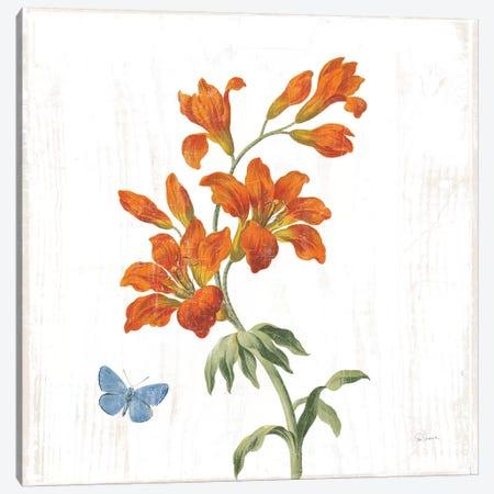 White Barn Flowers VII Sq Canvas Print #SLB99} by Sue Schlabach Canvas Art