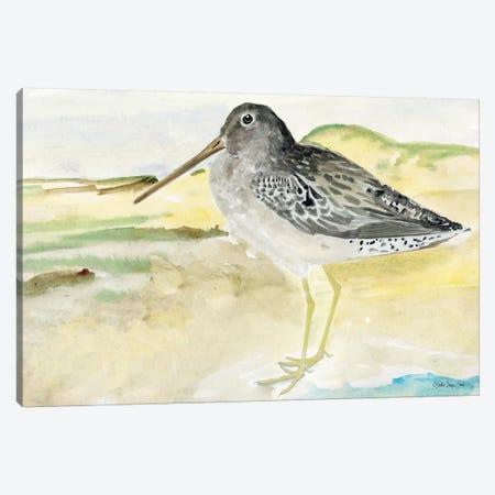 On the Beach II Canvas Print #SLD103} by Stellar Design Studio Canvas Art Print