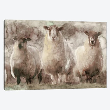 Three Sheep Canvas Print #SLD112} by Stellar Design Studio Canvas Wall Art