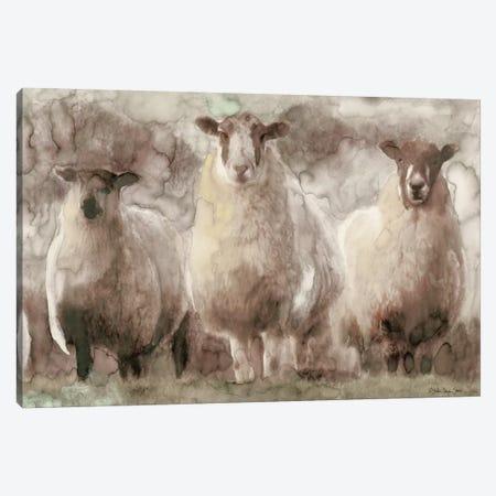 Three Sheep Canvas Print #SLD112} by Stellar Design Studio Canvas Wall Art
