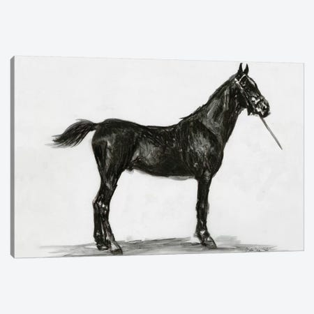 Horse Study III 3-Piece Canvas #SLD131} by Stellar Design Studio Canvas Art