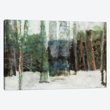 Winter Forest Canvas Print #SLD148} by Stellar Design Studio Canvas Print