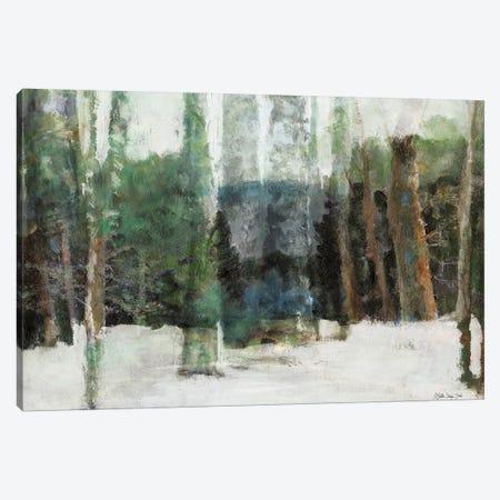 Winter Forest Canvas Print #SLD148} by Stellar Design Studio Canvas Print
