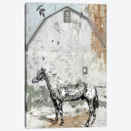 Barn with Horse Canvas Print #SLD157} by Stellar Design Studio Canvas Art Print