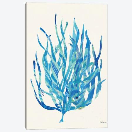 Coral Medley I Canvas Print #SLD162} by Stellar Design Studio Canvas Art Print