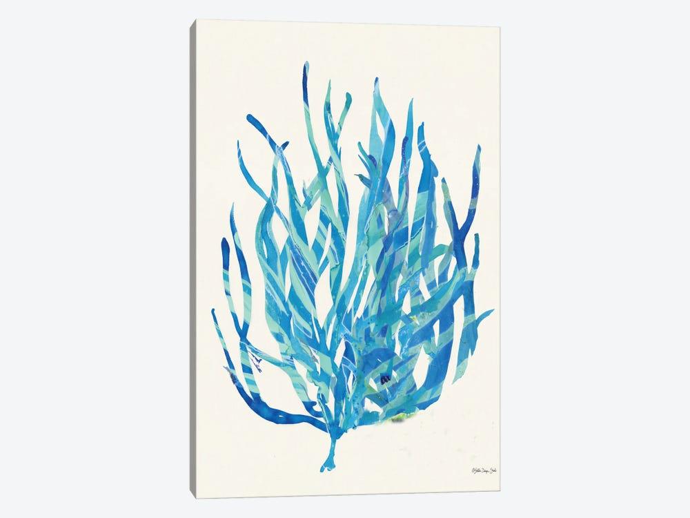 Coral Medley I by Stellar Design Studio 1-piece Canvas Art