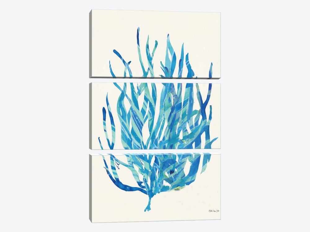 Coral Medley I by Stellar Design Studio 3-piece Canvas Artwork