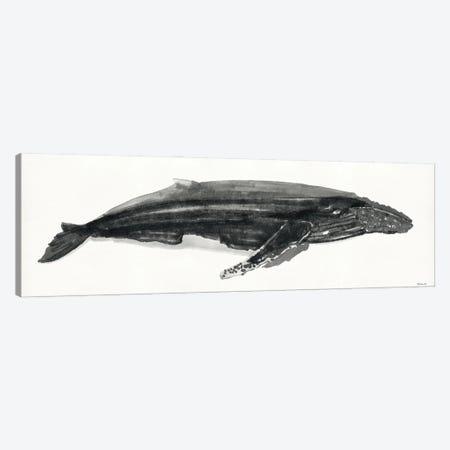 Gray Whale II Canvas Print #SLD175} by Stellar Design Studio Canvas Print