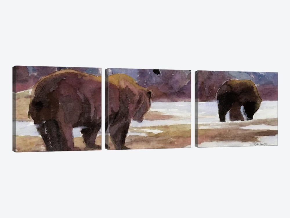 Montana Bears by Stellar Design Studio 3-piece Canvas Art Print