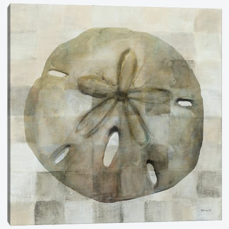 Sand Dollar Canvas Print #SLD189} by Stellar Design Studio Art Print