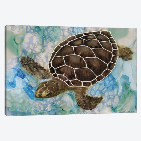 Sea Turtle Collage II Canvas Print #SLD194} by Stellar Design Studio Canvas Print