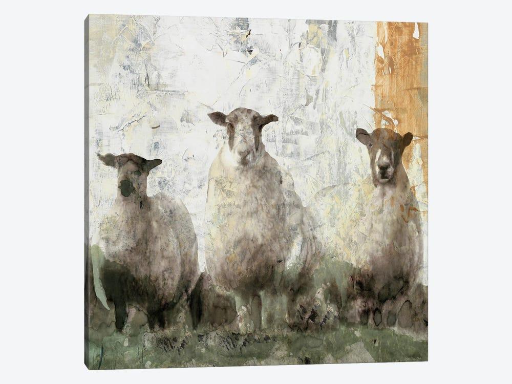 Three Sheep by Stellar Design Studio 1-piece Canvas Art Print