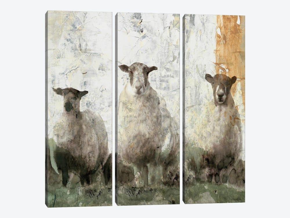 Three Sheep by Stellar Design Studio 3-piece Canvas Print