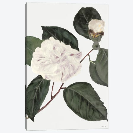 White Botanical I Canvas Print #SLD211} by Stellar Design Studio Art Print