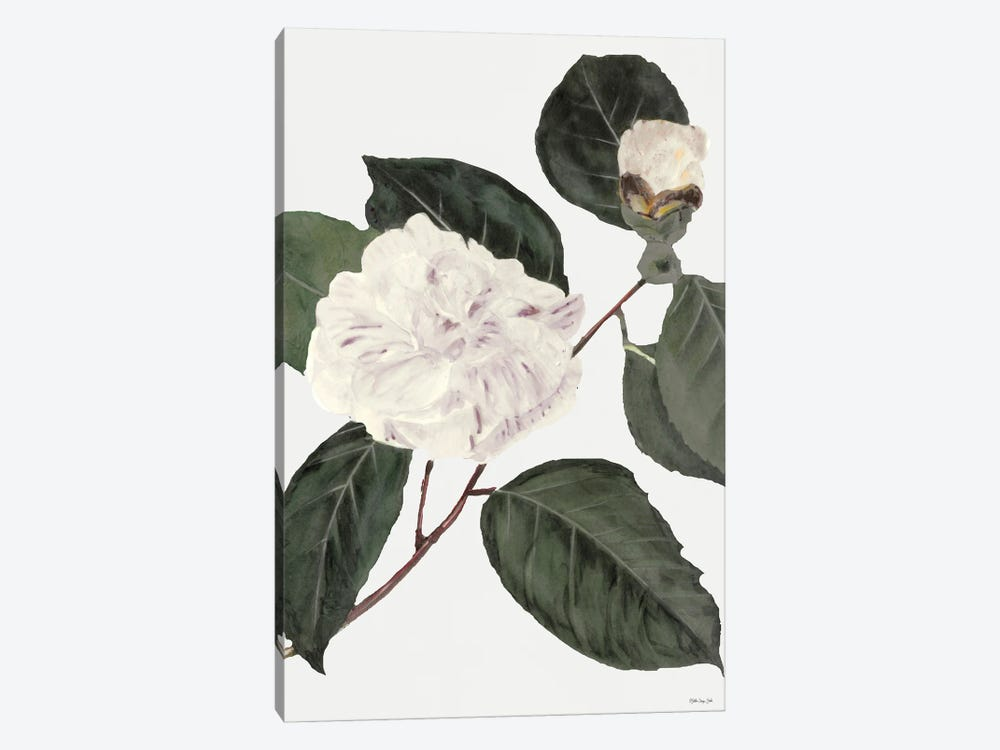 White Botanical I by Stellar Design Studio 1-piece Canvas Artwork